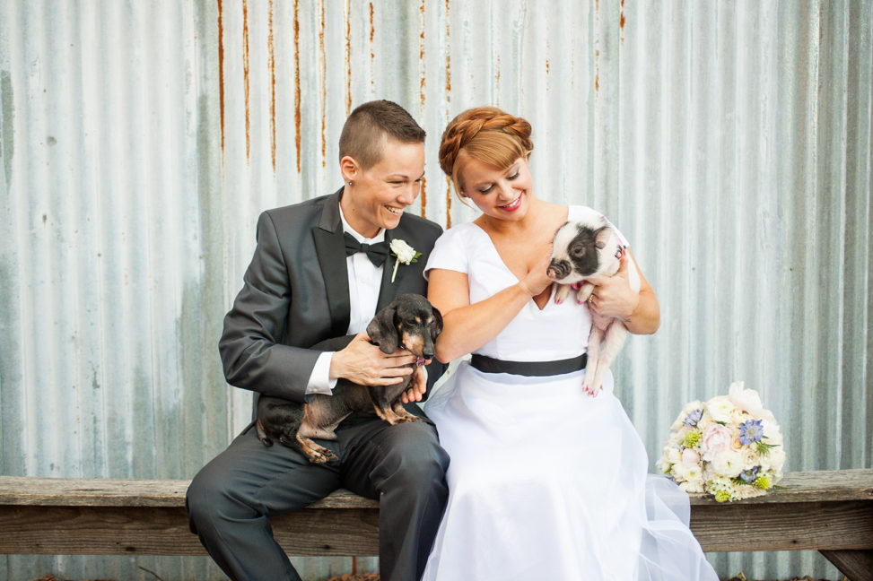 lgbtq couple in tux and wedding gown sitting on bench with a dachshund and a piglet