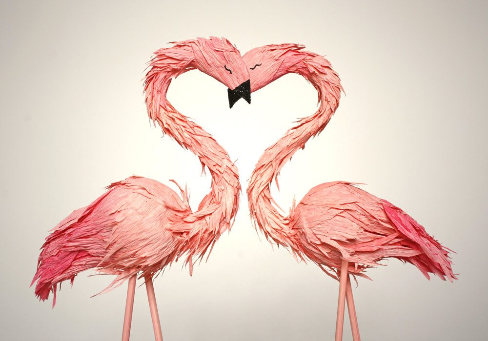 two flamingos forming a heart